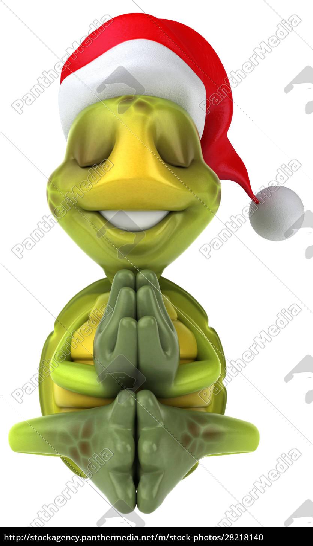 fun, turtle - 28218140