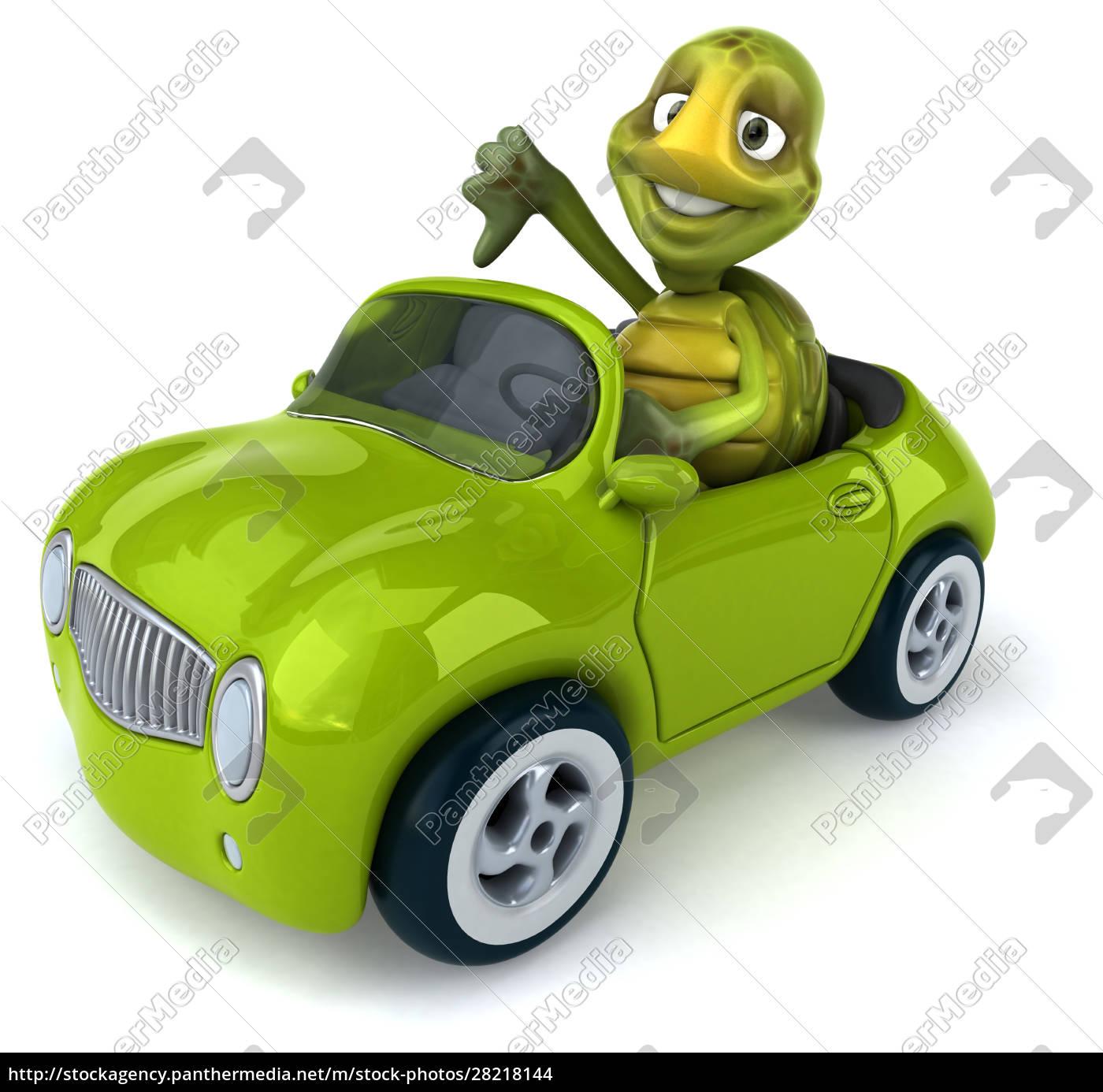 fun, turtle - 28218144