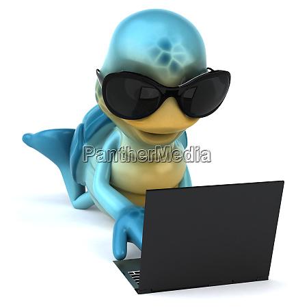 fun, turtle - 28218229