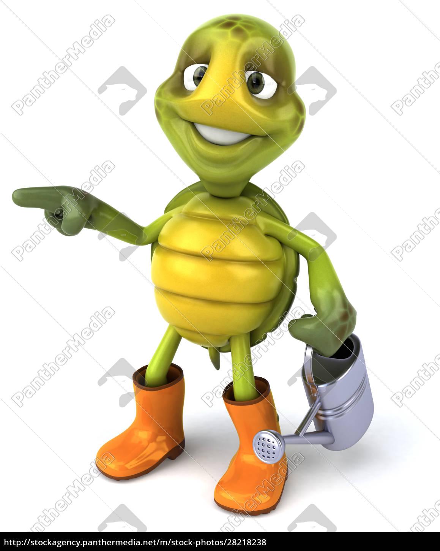 fun, turtle - 28218238