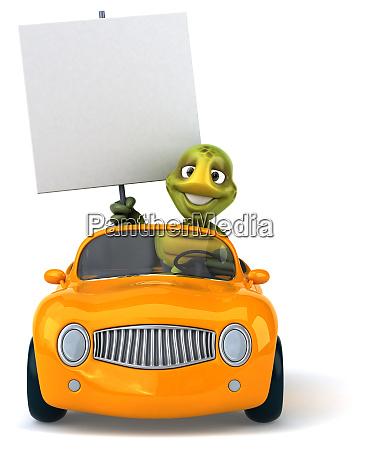 fun, turtle - 28218252