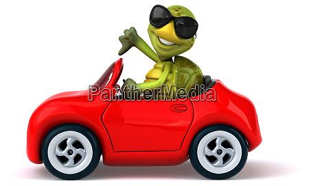 fun, turtle - 28218277