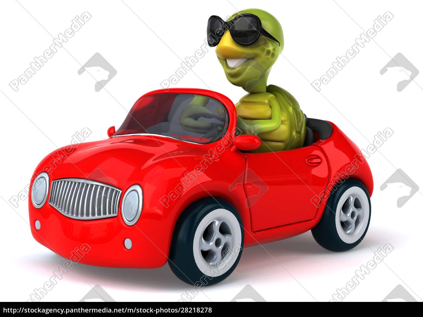 fun, turtle - 28218278