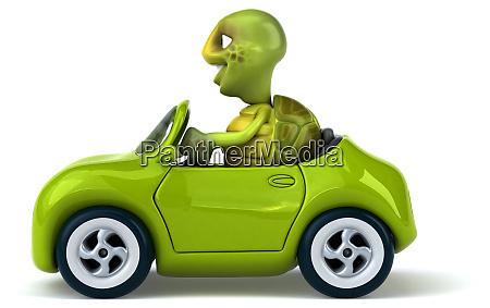 fun, turtle - 28218304
