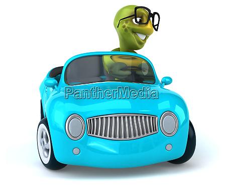 fun, turtle - 28218325
