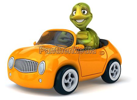 fun, turtle - 28218384
