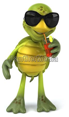 fun, turtle - 28218390