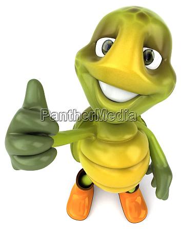 fun, turtle - 28218443