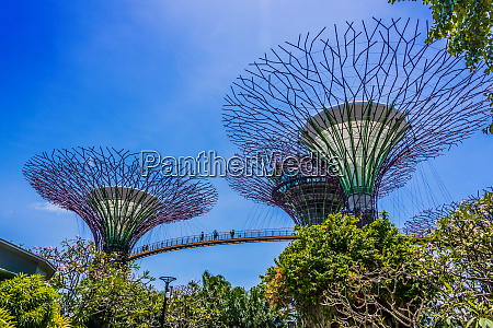gardens by the bay nature park