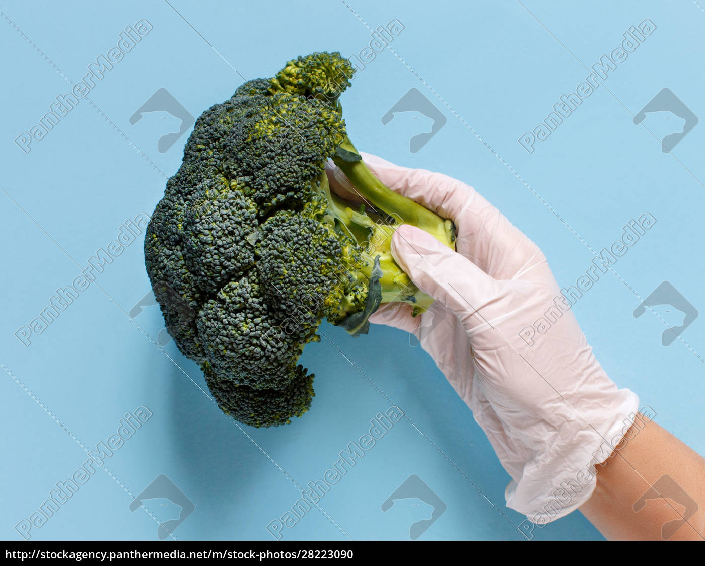 hand, in, glove, keeping, broccoli, over - 28223090