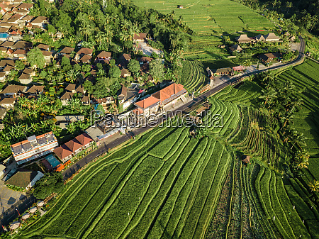 aerial view of penebel bali indonesia