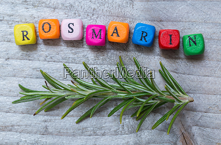 rosmarin in german rosemary with letter