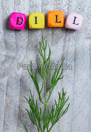 dill with letter cube concept against