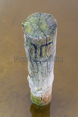 pole on a lakeside