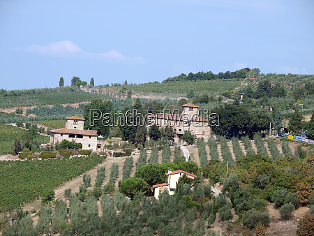 villa in tuscany amongst vineyards and