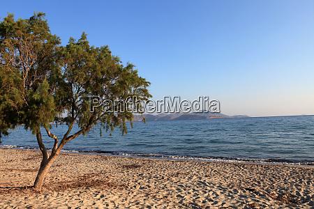 greece kos island tigaki beach