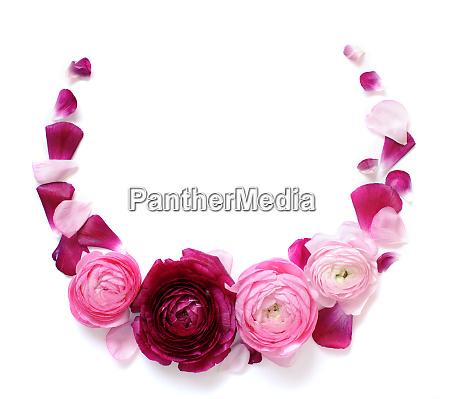 circle frame made of pink ranunculus