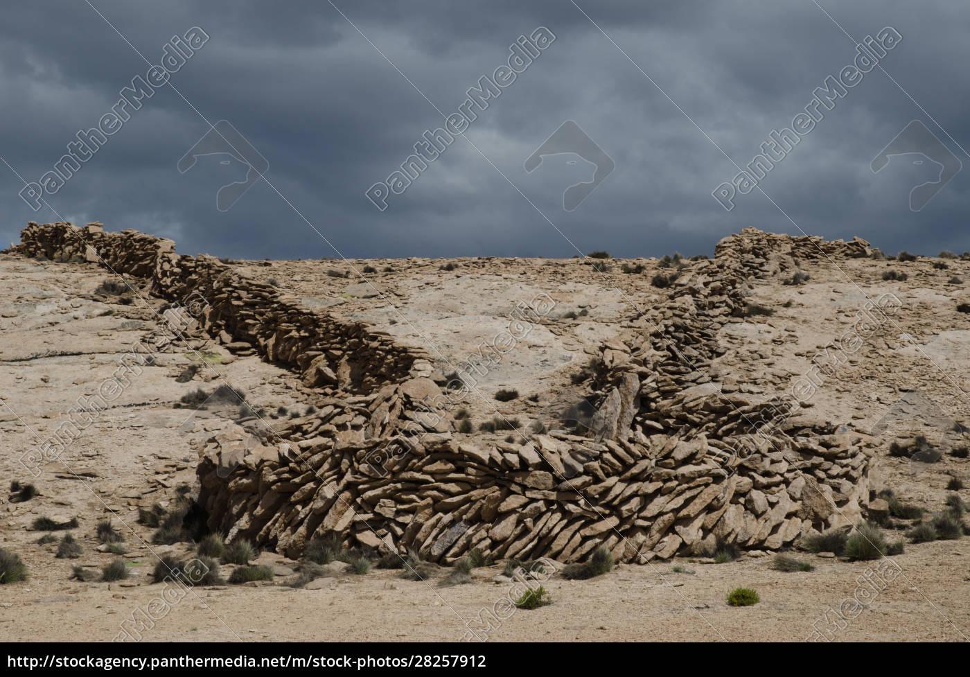 chaccu:, prehispanic, ancestral, technique, to, capture - 28257912