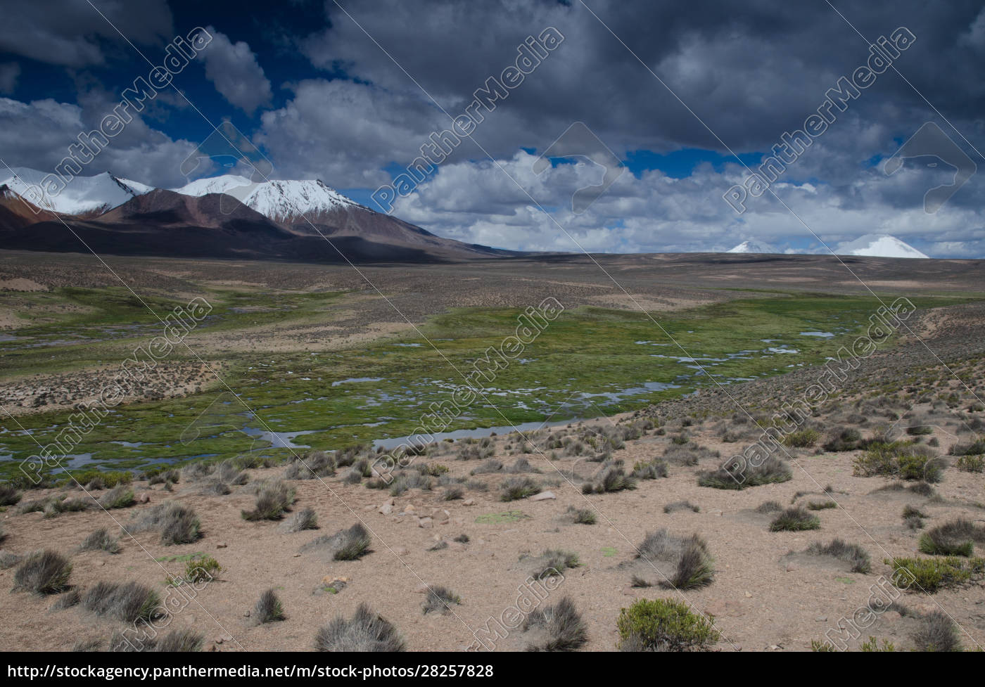 high, plateau, and, mountains, in, lauca - 28257828