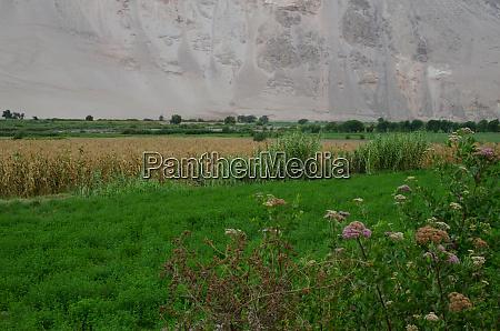 lluta, valley, in, the, arica, y - 28257625