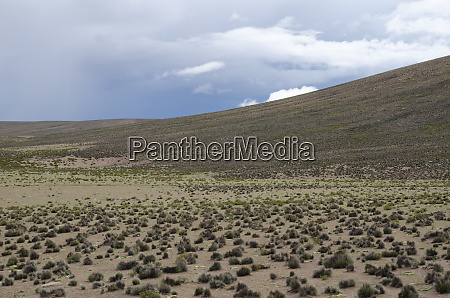 plateau, and, hill, in, lauca, national - 28257805