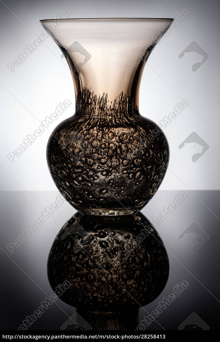 glass, vase, with, bubbles, in, back - 28258413