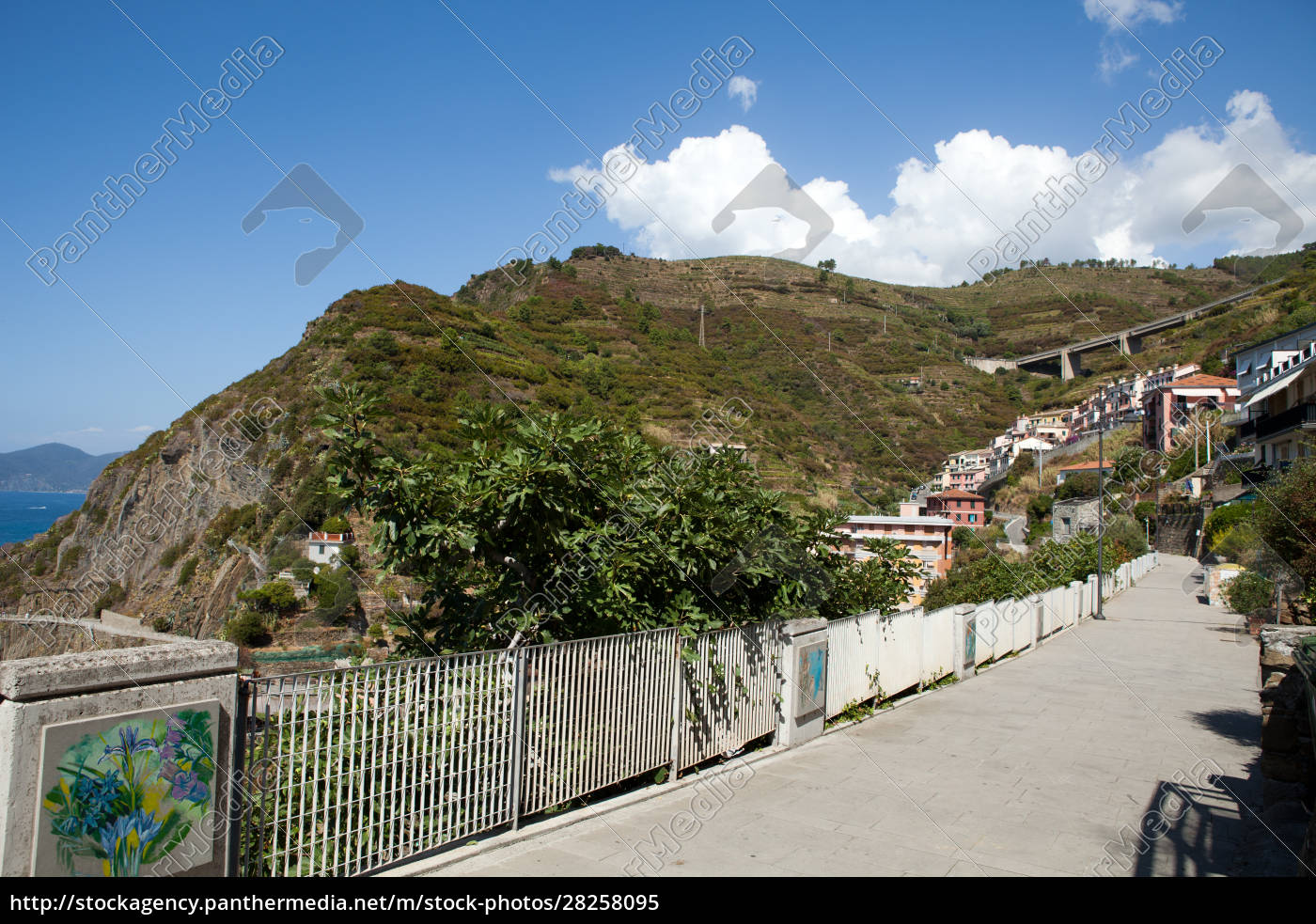 riomaggiore, -, one, of, the, cities - 28258095