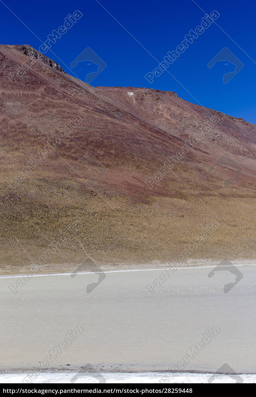 a, vertical, image, of, laguna, blanca - 28259448