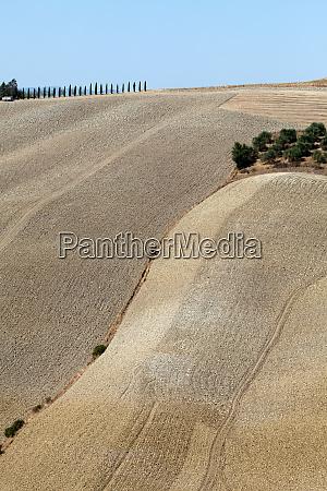 crete, senesi, - 28259613