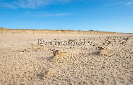 north, sea, beach - 28259547