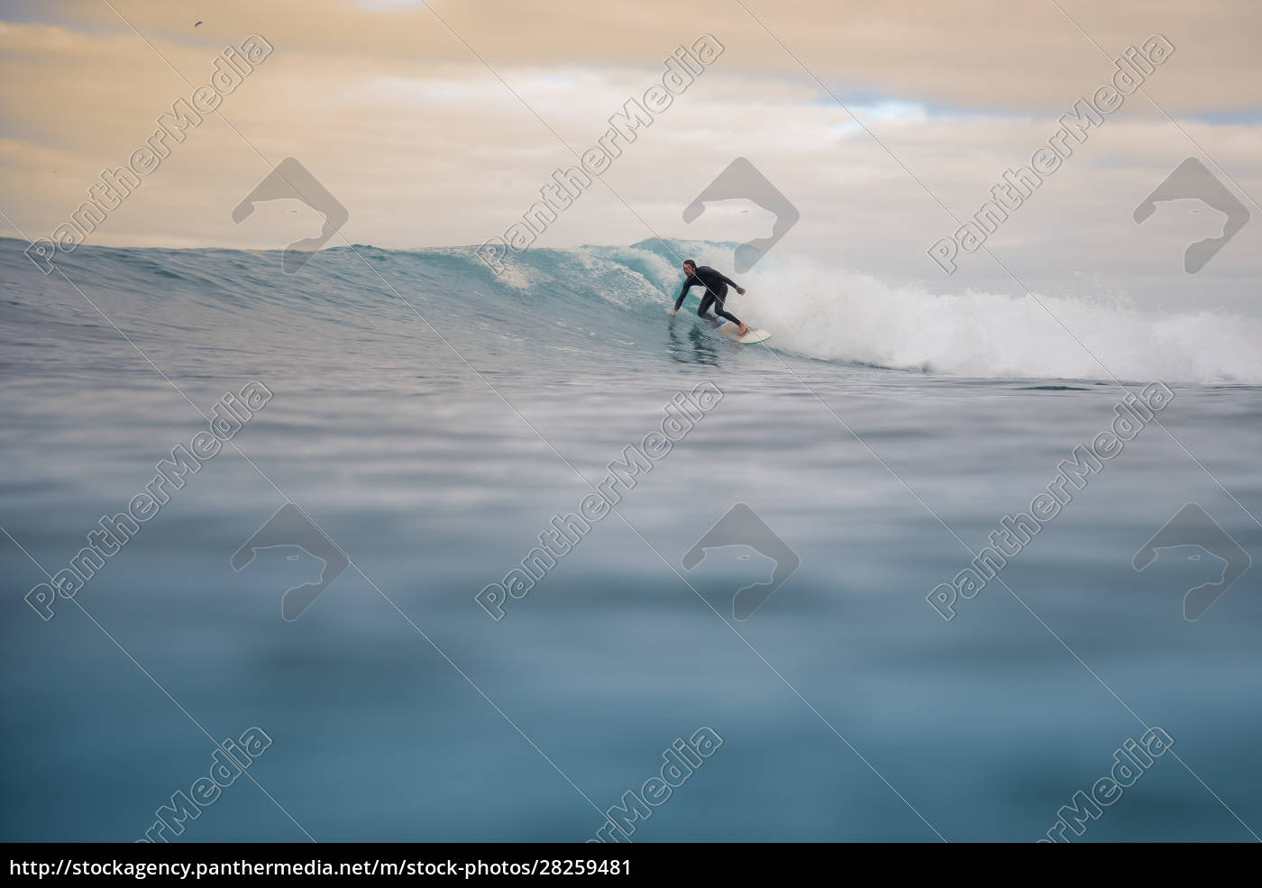 surfer, riding, waves, on, the, island - 28259481