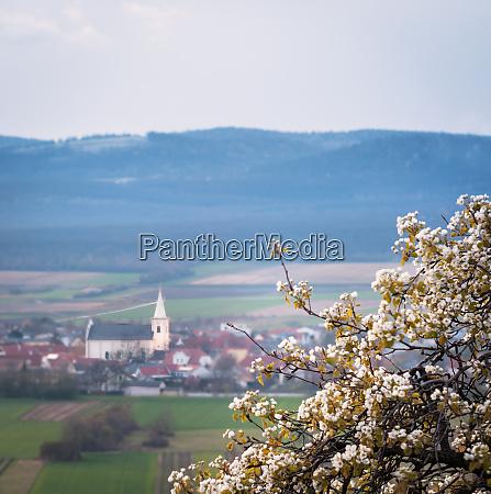 village, of, schützen, in, burgenland, with - 28259370