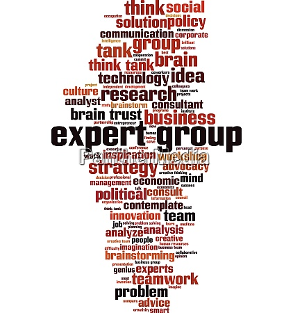 expert group word cloud