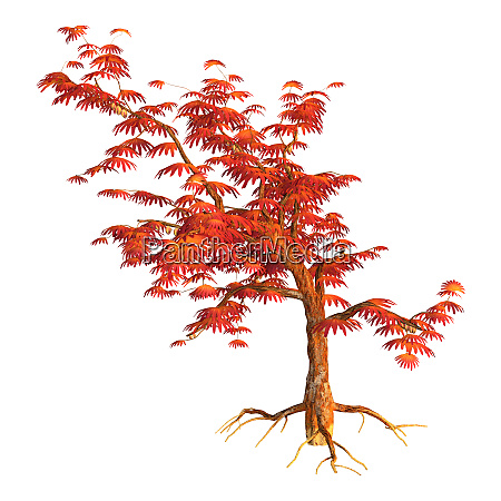 3d, rendering, alien, tree, on, white - 28277642