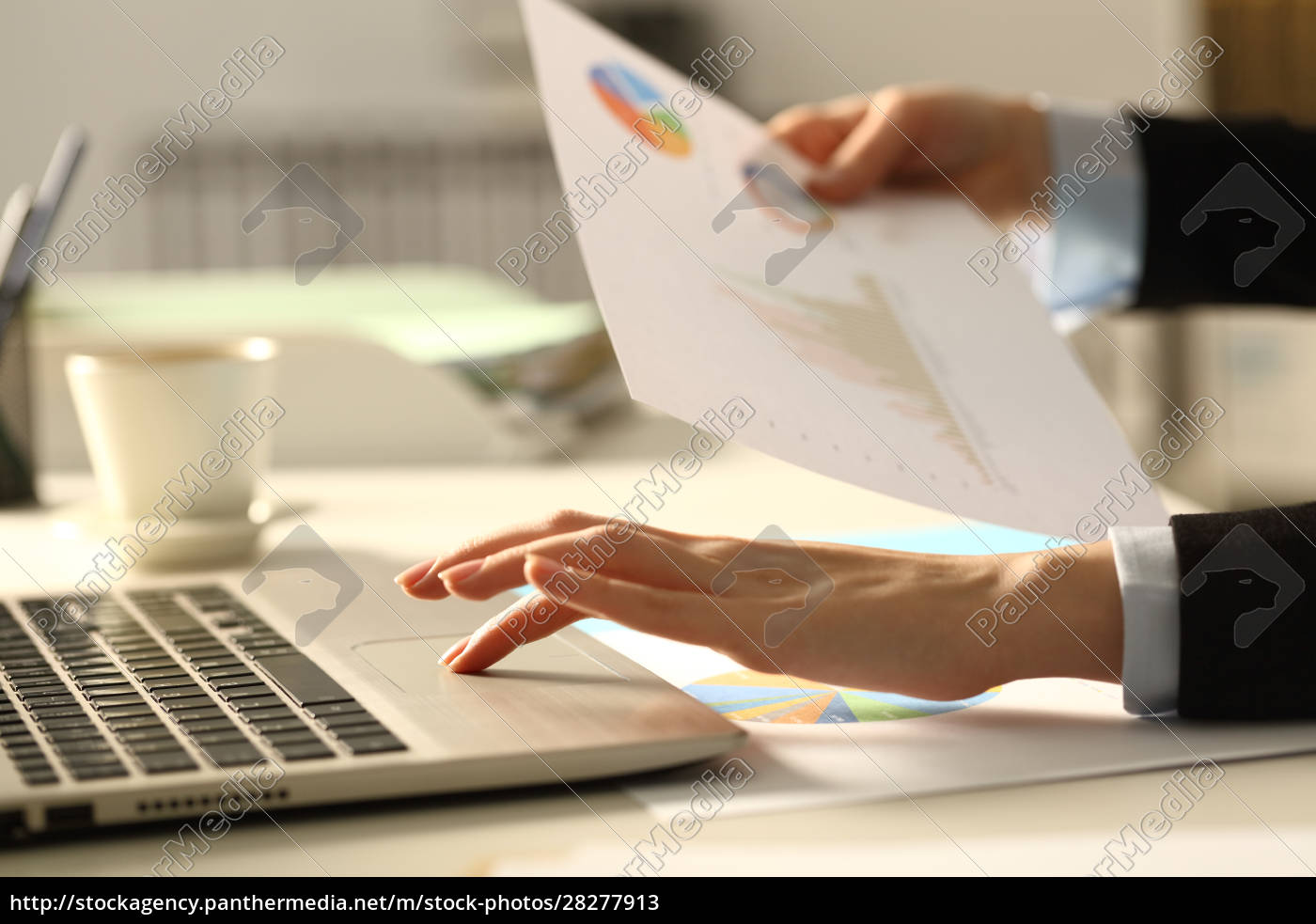 executive, hands, comparing, report, on, laptop - 28277913