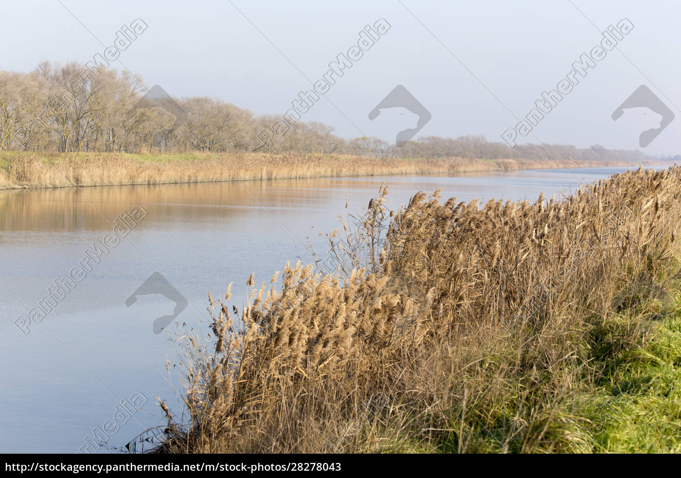 a, panorama, of, comacchio, valley, , countryside - 28278043