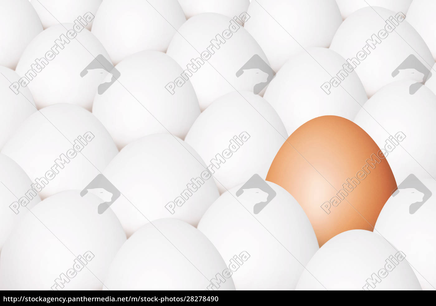 beautiful, easter, background, with, colorful, easter - 28278490
