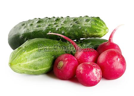ripe, green, cucumbers, and, radishes - 28278711
