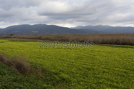 view, of, countryside, in, sardinia, during - 28278068