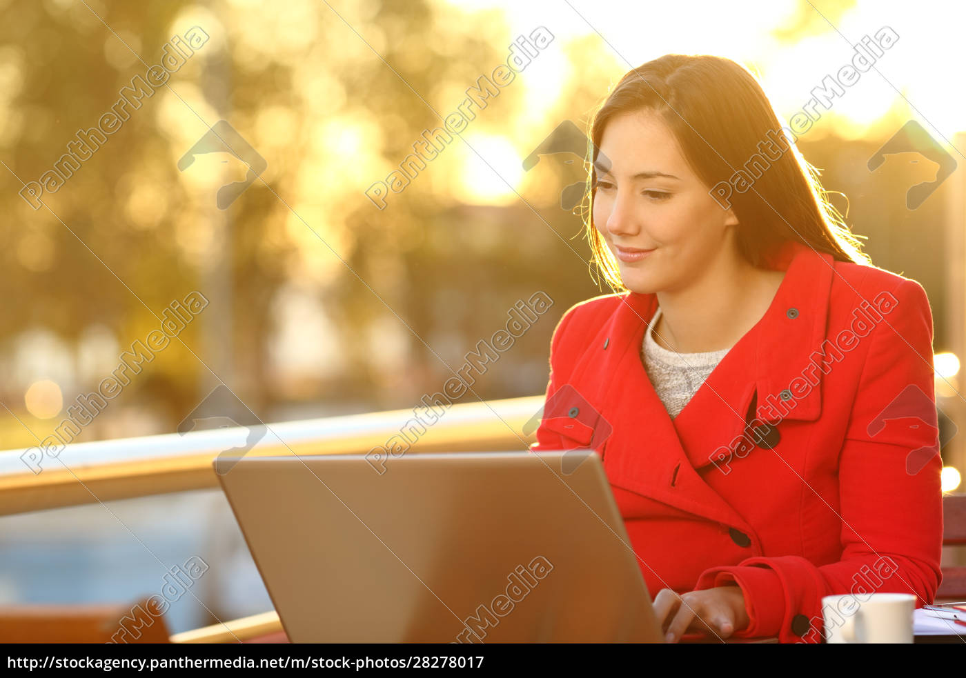 woman, reading, on, laptop, at, sunset - 28278017