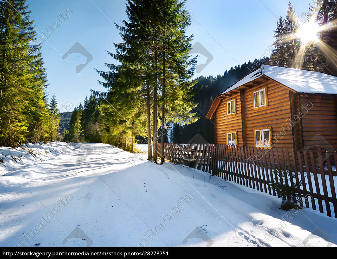 wooden, house, in, the, woods, near - 28278751