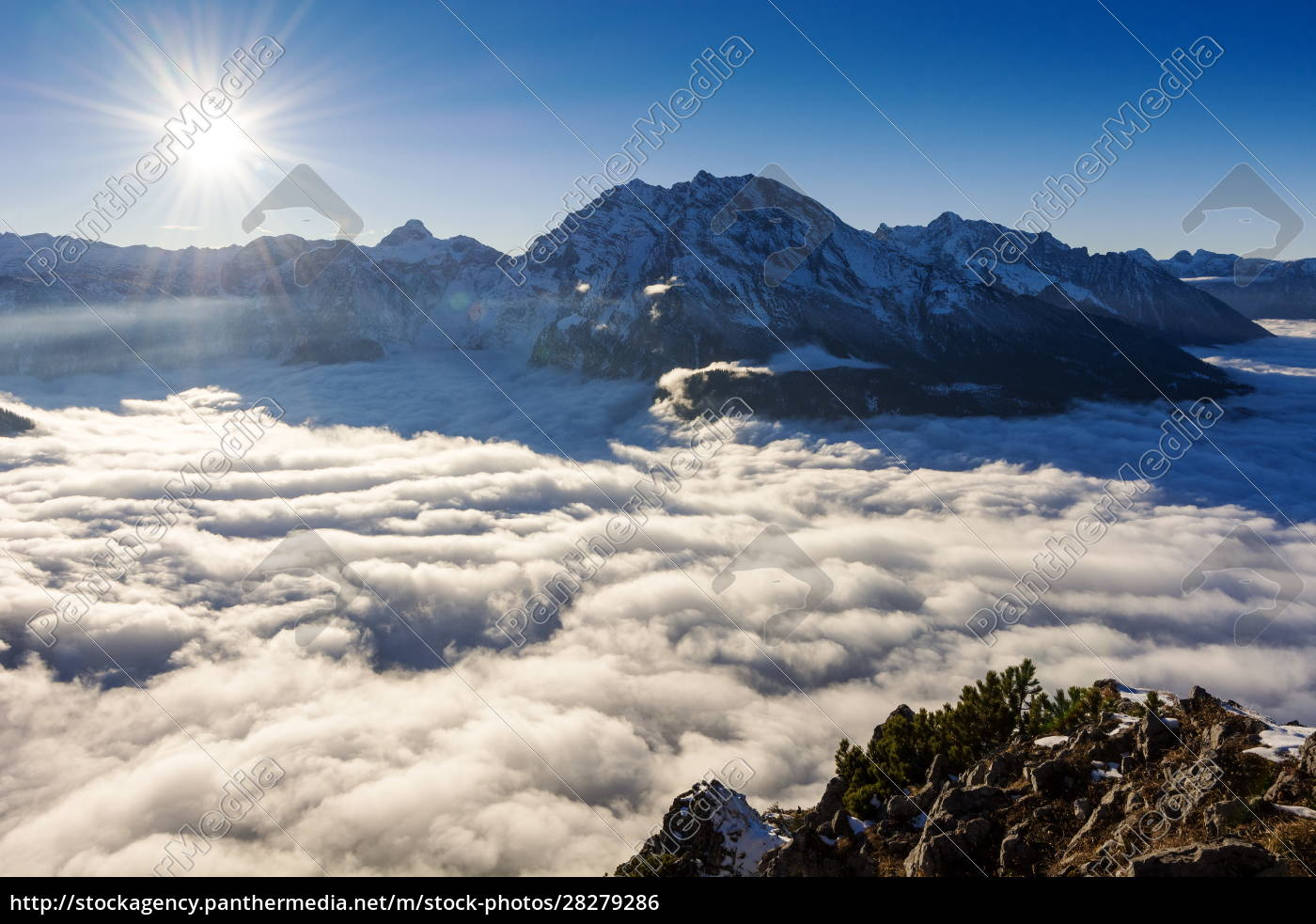a, foggy, day, in, the, alps - 28279286