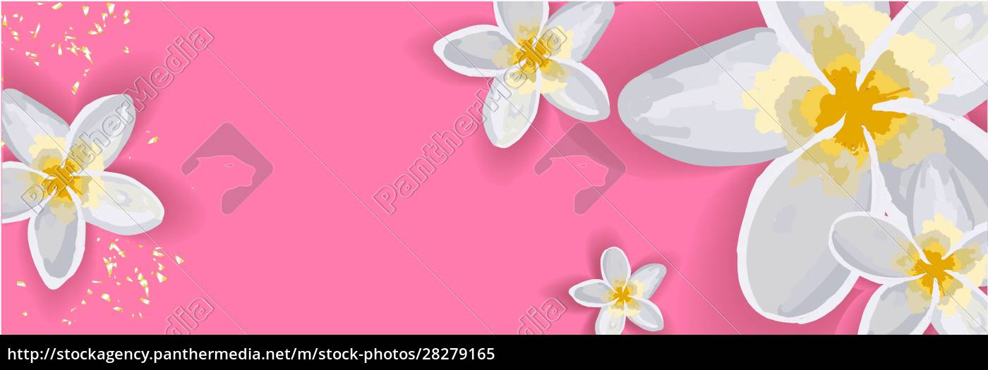 bright, spring, background, for, an, inscription. - 28279165