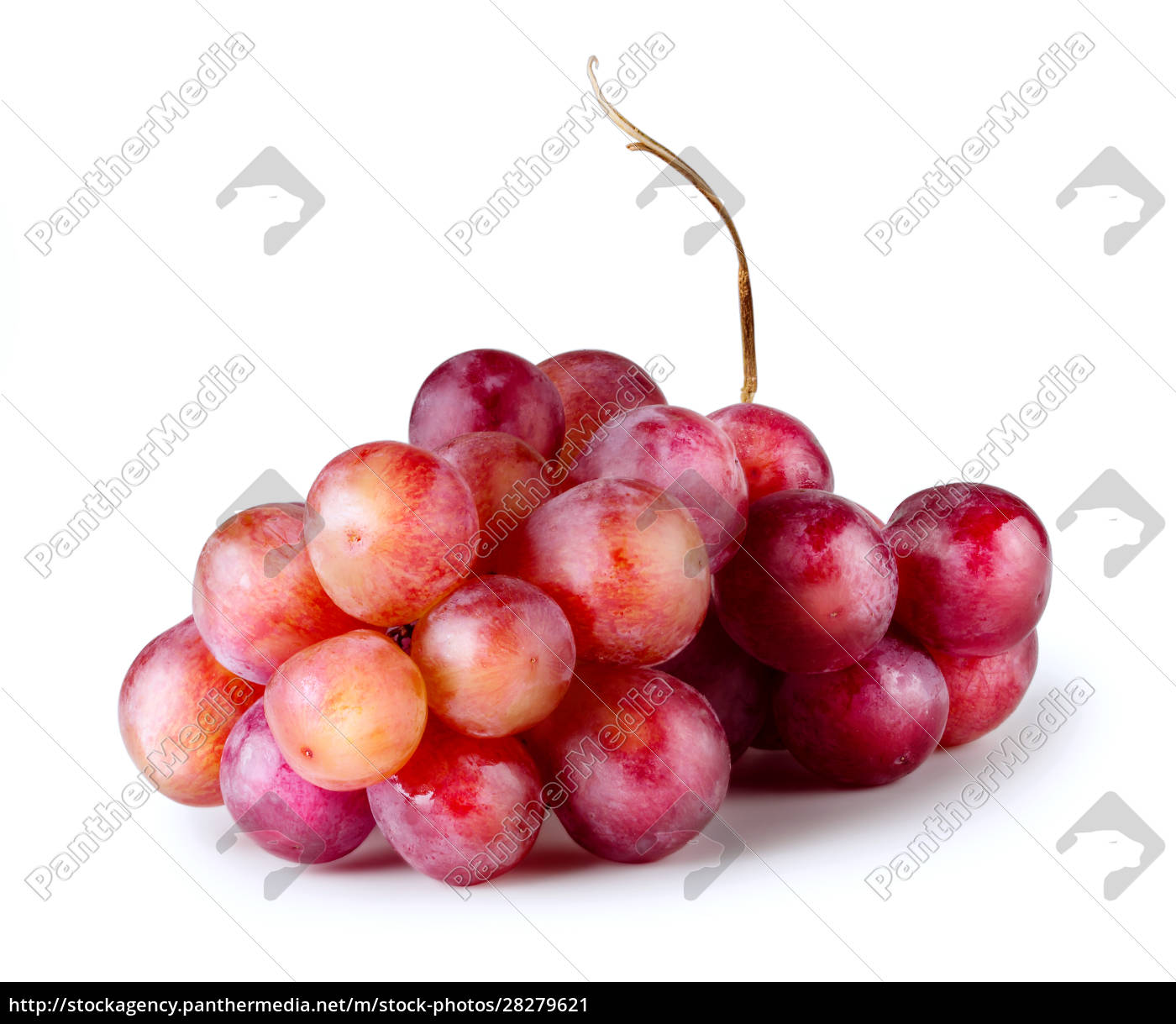 bunch, of, red, grapes - 28279621