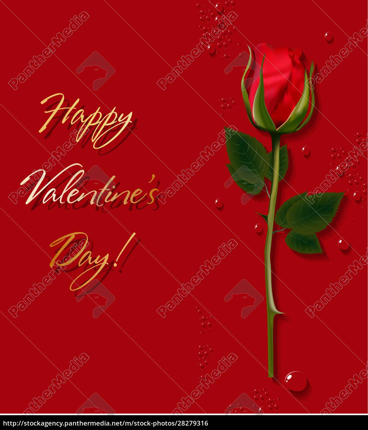 red, rose., gift, for, valentine's, day. - 28279316
