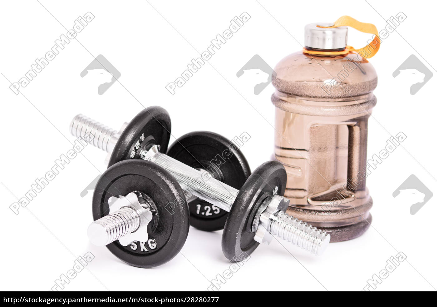 two, stainless, steel, dumbbells, and, a - 28280277
