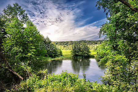 river bank with green trees and