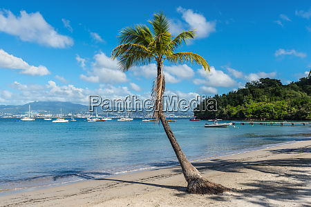 anse mitan bay view in the