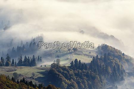 ukraine zakarpattia region carpathians borzhava foggy