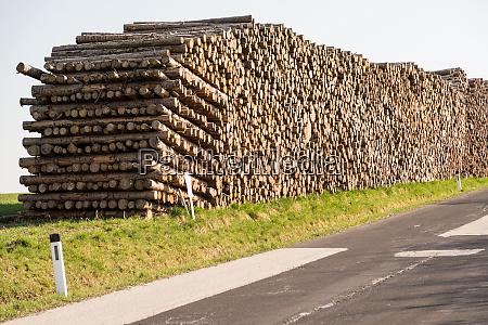 damaged wood and storm damage